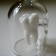 Tooth in a Jar Necklace - Kiva